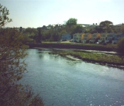 View of KIllorglin Riverbank Lodges from across the River