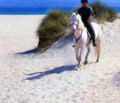 Horseriding at Rossbeigh Beach, Glenbeigh