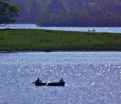 Fishing for wild Trout on Caragh Lake Killorglin